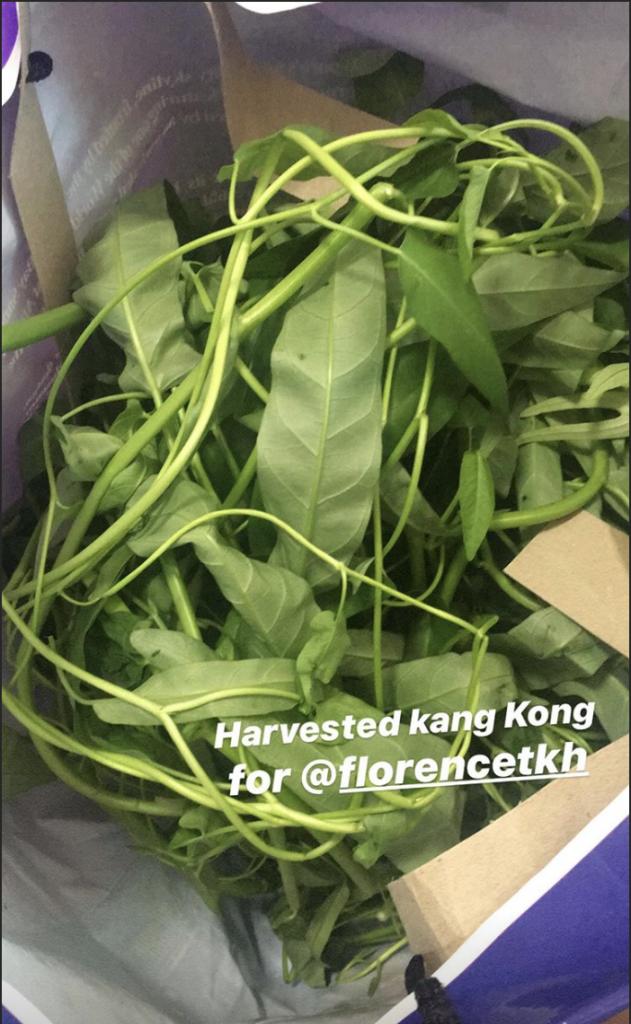 KANG KONG